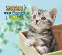 2020年 ミニ判カレンダー こねこ [ 井川 俊彦 ]
