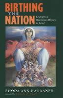 Birthing_the_Nation��_Strategie