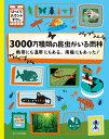 3000万種類の昆虫がいる雨林 熱帯にも温帯にもある 南極にもあった! (びっくりカウントダウン) ポール ロケット