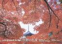【楽天ブックスならいつでも送料無料】virtual trip 京都の紅葉
