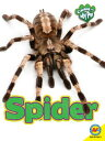 Spider SPIDER (Caring for My Pet)