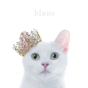 "BEST SELECTION ""blanc"" [ Aimer ]"