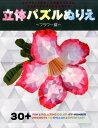立体パズルぬりえ(フラワー編) 30+FUN & RELAX...