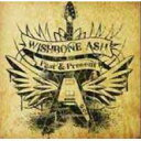 【輸入盤】Past Present Wishbone Ash