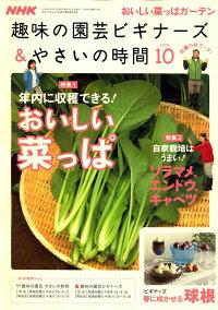 NHK_��̣�α�ݥӥ��ʡ���_&_�䤵���λ���_2009ǯ_10���_[����]