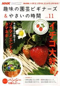 NHK_��̣�α�ݥӥ��ʡ���_&_�䤵���λ���_2009ǯ_11���_[����]
