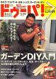 ドゥーパ ! 2008年 04月号 [雑誌]