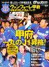 ヴァンフォーレ甲府J1昇格記念号 2011年 01月号 [雑誌]