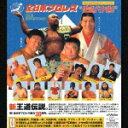 全日本プロレス 創立30周年記念オフィシャルCD 王道バク進!