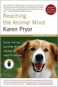 Reaching the Animal Mind: Clicker Training and What It Teaches Us about All Animals REACHING THE ANIMAL MIND [ Karen Pryor ]