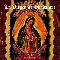La_Virgen_de_Guadalupe