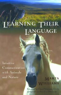Learning_Their_Language��_Intui