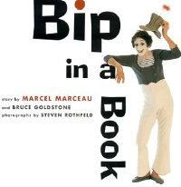BIP_IN_A_BOOK