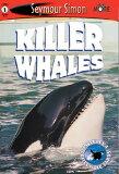Killer Whales: See More Readers Level 1 [ Seymour Simon ]