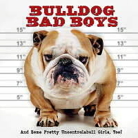 Bulldog_Bad_Boys��_And_Some_Pre