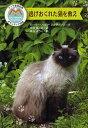 逃げおくれた猫を救え/ローリー・ハルツ・アンダーソン/中井はるの/藤丘ようこ【1000円以上送料無料】