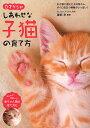 0才からのしあわせな子猫の育て方/服部幸【1000円以上送料無料】