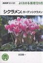 シクラメン、ガーデンシクラメン/吉田健一【1000円以上送料無料】