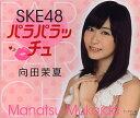 SKE48 パラパラッチュ 向田茉夏【1000円以上送料無料】