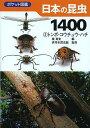 日本の昆虫1400 2/槐真史/伊丹市昆虫館【1000円以上送料無料】