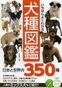 コツがわかる本【1000円以上送料無料】いちばんよくわかる犬種図鑑 日本と世界の350種/奥田香代【RCP】