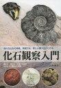 化石観察入門 様々な化石の特徴、発掘方法、新しい調べ方がわか...