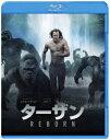 送料無料/ターザン:REBORN ブルーレイ&DVDセット/アレクサンダー・スカルスガルド