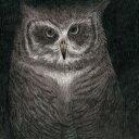 フクロウの声が聞こえる(完全生産限定盤)/小沢健二とSEKAI NO OWARI【1000円以上送料無料】