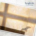 映画『リズと青い鳥』ED主題歌「Songbirds」/Hom...