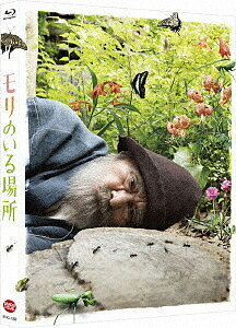 モリのいる場所(特装限定版)(Blu−ray Disc)/山崎努/樹木希林【1000円以上送料無料】
