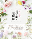 ちいさな花言葉・花図鑑/宇田川佳子