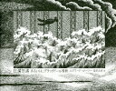 狂瀾怒濤 あるいは、ブラックドール騒動/エドワード・ゴーリー/柴田元幸【1000円以上送料無料】
