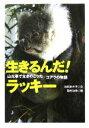 【中古】 生きるんだ!ラッキー 山火事で生きのこったコアラの物語 動物感動ノンフィクション/池田まき