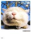 【中古】 かご猫 日本一のヘン顔 /Shironeko【著】 【中古】afb