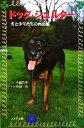 【中古】 ドッグ・シェルター 犬と少年たちの再出航 フォア文庫C182/今西乃子【著】,浜田一男【写真】 【中古】afb