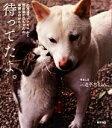 【中古】 待ってたよ。 北海道犬ナナちゃんと野良猫ヒロちゃんの早朝ものがたり /三遊亭あほまろ【著】 【中古】afb