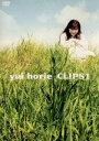 【中古】 yui horie CLIPS1 /堀江由衣 【中古】afb