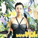 【中古】 bird's nest /bird 【中古】afb