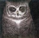 【中古】 フクロウの声が聞こえる(完全生産限定盤) /小沢健二とSEKAI NO OWARI 【中古】afb