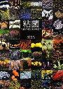 【中古】 粘菌 驚くべき生命力の謎 /松本淳【解説】,伊沢正名【写真】 【中古】afb