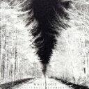 【中古】 WHITEOUT(初回限定盤)(DVD付) /NOCTURNAL BLOODLUST 【中古】afb