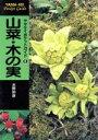 【中古】 山菜 木の実 ヤマケイポケットガイド6/水野仲彦(著者) 【中古】afb