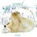 【中古】 シロクマのねがい Seiseisha minibook/前川貴行【著】 【中古】afb