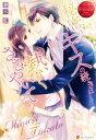 【中古】 秘密のキスの続きは熱くささやいて Miyu & Takato エタニティブックス 赤/藤谷藍(著者) 【中古】afb