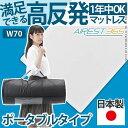 送料無料 日本製 新構造エアーマットレス エアレスト365 ポータブル 70×200cm 高反発マット