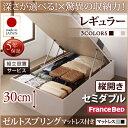 送料無料 組立設置付 日本製 跳ね上げベッド ゼルトスプリングマットレス付き 縦開き セミダブル 深さレギュラー 収納ベッド ベット 収納付...