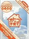 �y2500�~�ȏ㑗�������z�I�g�R�̎q��ā@DVD?BOX�^�������T