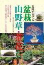 北陸で育てる盆栽山野草・茶花【2500円以上送料無料】