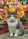 ネコと歩けば ニッポンの猫写真集/岩合光昭【2500円以上送料無料】