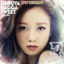 渋谷 RAGGA SWEET COLLECTION 3/SPICY CHOCOLATE【3000円以上送料無料】